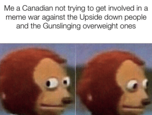 Drinking, Meme, and Canadian: Me a Canadian not trying to get involved in a  meme war against the Upside down people  and the Gunslinging overweight ones Not looking for trouble here just drinking my hortons
