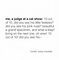 berri: me, a judge at a cat show  10 out  of 10. did you see his little feetsies?  did you see his pink nose? beautiful  a grand specimen. and what a blep!  bring on the next one. oh wow! 10  out of 10! did you see his--  tumblr: berry-mentats
