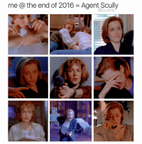 Memes, 🤖, and Agent: me a the end of 2016 Agent Scully comment which scully you are below 👌👌👌
