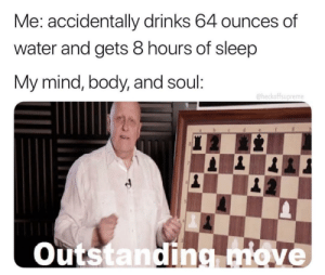 Water, Dank Memes, and Mind: Me: accidentally drinks 64 ounces of  water and gets 8 hours of sleep  My :  mind, body, and soul  @heckoffsupreme  Outstandingove @heckoffsupreme