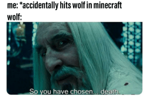 25+ Best Minecraft Wolf Memes | Need More Memes, Being Memes
