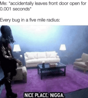 I am a good host: Me: *accidentally leaves front door open for  0.001 seconds*  Every bug in a five mile radius:  NICE PLACE NIGGA. I am a good host