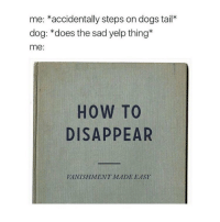 Memes, Yelp, and 🤖: me: accidentally steps on dogs tail  dog: does the sad yelp thing  me  HOW TO  DISAPPEAR  VANISHMENT MADE EASY. i'm shocked and upset at the lack of people confessing their undying love to me but okay :- - 🍊 ☀️ 🍊 ☀️ 🍊 ☀ 🍊 ☀️ textpost textposts textpostfunny haha funny hilarious lmao 😂 same me relatable funnytextposts humor humour tumblr tumblrfunny tumblrquotes funnyposts tagyourself funnyaccount relatableposts meme hashtag shrek textpostaccount posts funnythings dankmemes memes lol why did you read all this
