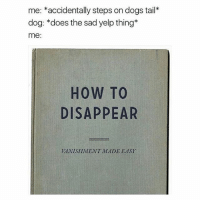 Memes, 🤖, and Step: me  accidentally steps on dogs tail*  dog: does the sad yelp thing  me:  HOW TO  DISAPPEAR  VANISHMENT MADE EASY I feel so guilty when this happens meme dankmemes memelord dailymemes