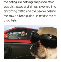 Driving, Funny, and Meme: Me acting like nothing happened after  was distracted and almost swerved into  oncoming traffic and the people behind  me saw it all and pulled up next to me at  a red light Of course I wasn't trying to post this exact meme while driving @cabbagecatmemes 😅😎