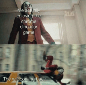 meirl by PsychoManIsNotCrazy MORE MEMES: Me actually  enjoying the  chrome  EXIT  dinosaur  game  The wifi coming back meirl by PsychoManIsNotCrazy MORE MEMES