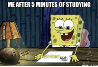 Com, Studying, and 5 Minutes: ME AFTER 5 MINUTES OF STUDYING  MEMEFUL COM