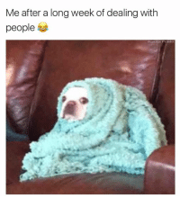 Funny, Memes, and 🤖: Me after a long week of dealing with  people  oununage Pranks Leave me here 😆  Like Ownage Pranks for MORE funny pics!