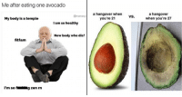 <p>14 Avocado Memes That Have Really Hit Guac Bottom</p>: Me after eating one avocado  meme  a hangover when  you're 21  a hangover  when you're 27  My body is a temple  I am so healthy  New body who dis?  fitfam  I'm sofg zen rn <p>14 Avocado Memes That Have Really Hit Guac Bottom</p>