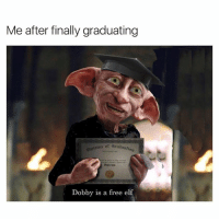 Yes 😂: Me after finally graduating  of Granta ttcr  Dobby is a free elf Yes 😂
