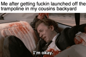 More of the best memes at http://mountainmemes.tumblr.com: Me after getting fuckin launched off the  trampoline in my cousins backyard  I'm okay. More of the best memes at http://mountainmemes.tumblr.com