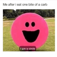 Memes, 🤖, and One: Me after i eat one bite of a carb  Iam a circle 🌝 Go and follow @thespeckyblonde @thespeckyblonde @thespeckyblonde