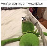 Funny, Lol, and Memes: Me after laughing at my own jokes Lol me when I make memes