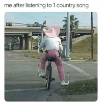 Memes, 🤖, and Add: me after listening to 1 country song Add us on Snap 🅱️:  DankMemesGang