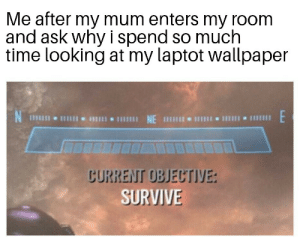 Dank, Memes, and Target: Me after my mum enters my room  and ask why i spend so much  time looking at my laptot wallpaper  lII NE  じURREIT OBJECTIYE:  SURVIVE me irl by WonkieDaX MORE MEMES
