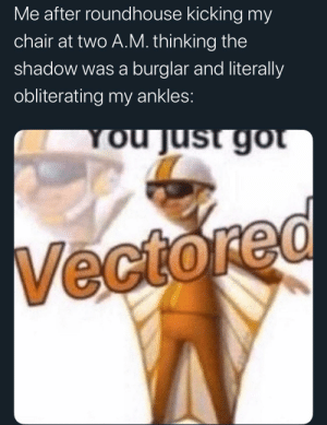 Vectored: Me after roundhouse kicking my  chair at two A.M. thinking the  shadow was a burglar and literally  obliterating my ankles:  You just got  Vectored Vectored