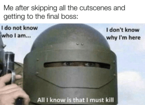 More of the best memes at http://mountainmemes.tumblr.com: Me after skipping all the cutscenes and  getting to the final boss:  I do not know  who I am...  I don't know  why I'm here  All I know is that I must kill More of the best memes at http://mountainmemes.tumblr.com