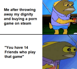 "Friends, Steam, and Game: Me after throwing  away my dignity  and buying a porn  game on steam  ""You have 14  Friends who play  that game"" *visible confusion*"