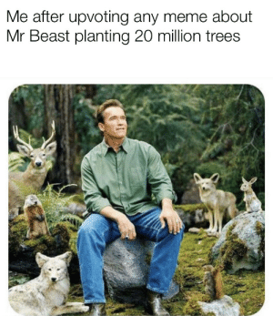 Getting that feeling again: Me after upvoting any meme about  Mr Beast planting 20 million trees Getting that feeling again