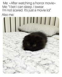 """I Bet, Lol, and Movie: Me: After watching a horror movie*  Me: """"I bet I can sleep. I swear  I'm not scared. It's just a movie lol""""  Also me Im not scared."""