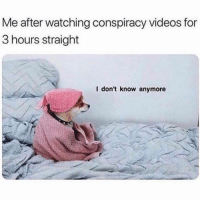 Funny, Videos, and Earth: Me after watching conspiracy videos for  3 hours straight  l don't know anymore Can't decide if the earth is flat or hollow