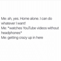 Home Alone, Memes, and Headphones: Me: ah, yes. Home alone. I can do  whatever I want!  Me: *watches YouTube videos without  headphones  Me: getting crazy up in here tonight's plan (@memes)