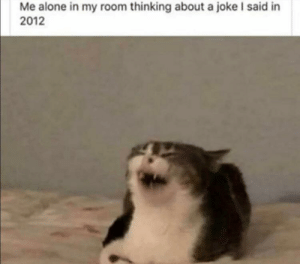 Meirl: Me alone in my room thinking about a joke I said in  2012 Meirl
