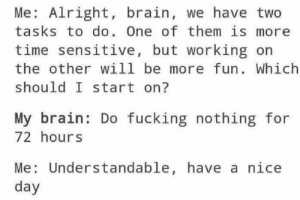 me irl by something693 FOLLOW 4 MORE MEMES.: Me: Alright, brain, we have two  tasks to do. One of them is more  time sensitive, but working on  the other will be more fun. Which  should I start on?  My brain: Do fucking nothing for  72 hours  Me: Understandable, have a nice  day me irl by something693 FOLLOW 4 MORE MEMES.