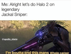 Halo, Meme, and Apollo: Me: Alright let's do Halo 2 on  legendary  Jackal Sniper:  @apollo xluna  I'm boutta end this mans Whole career Another awesome Halo meme. https://t.co/nBIhvdmc8m