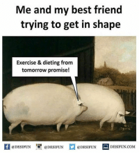 Be Like, Best Friend, and Dieting: Me and my best friend  trying to get in shape  Exercise & dieting from  tomorrow promise!  困@DESIFUN igi @DESIFUN  @DESIFUN-DESIFUN.COM Twitter: BLB247 Snapchat : BELIKEBRO.COM belikebro sarcasm meme Follow @be.like.bro
