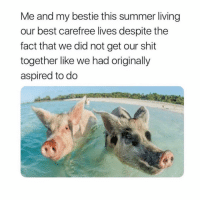 tag your bestie lmao: Me and my bestie this summer living  our best carefree lives despite the  fact that we did not get our shit  together like we had originally  aspired to do tag your bestie lmao