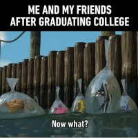 College, Dank, and Friends: ME AND MY FRIENDS  AFTER GRADUATING COLLEGE  Now what? Congrats, you're officially jobless!