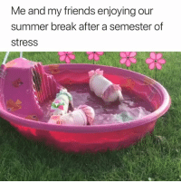 Summer goals 😂   Priscilla the Mini Pig: Me and my friends enjoying our  summer break after a semester of  stress Summer goals 😂   Priscilla the Mini Pig