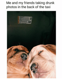 Bitch, Doge, and Drunk: Me and my friends taking drunk  photos in the back of the taxi Doge 1: OMG I look so ugly Doge 2: Bitch stop it you look sexaayyy | Follow @aranjevi for more!
