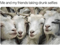 Drunk, Friends, and Funny: Me and my friends taking drunk selfies Last weekend lmao