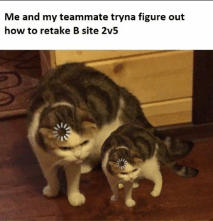 Only CS:GO veterans will understand: Me and my teammate tryna figure out  how to retake B site 2v5 Only CS:GO veterans will understand