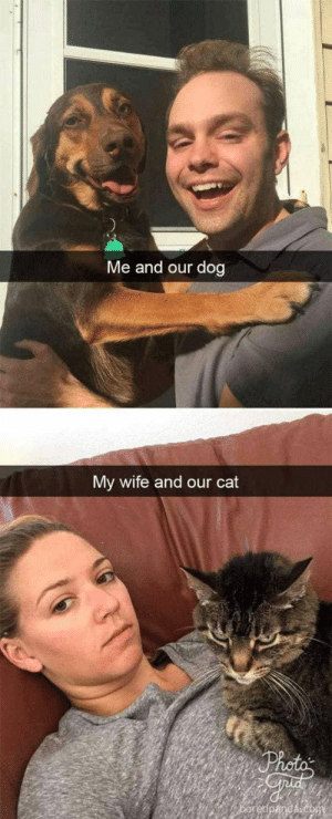 30+ Funny Cat Vs. Dog Memes To Prove Who's The Boss #catmemes #dogmemes - Lovely Animals World: Me and our dog  My wife and our cat 30+ Funny Cat Vs. Dog Memes To Prove Who's The Boss #catmemes #dogmemes - Lovely Animals World