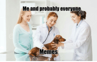 Love, Memes, and Reddit: Me and probably everyone  Memes