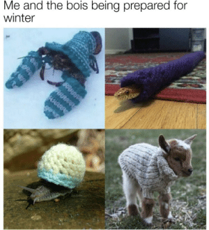 https://t.co/3m0j4Wbiyt: Me and the bois being prepared for  winter  ARRA https://t.co/3m0j4Wbiyt