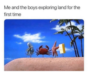 Land vs Sea: Me and the boys exploring land for the  first time Land vs Sea