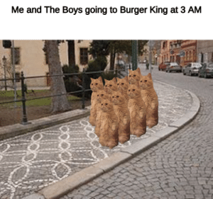 Burger King, Dank Memes, and Boys: Me and The Boys going to Burger King at 3 AM B U R G E R T I M E