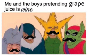 me_irl: Me and the boys pretending grape  juice is wine  YOUR ALAS  boooco0000 me_irl