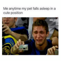 Cute, Memes, and Live: Me anytime my pet falls asleep in a  cute position  LIVE ND