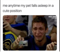 Cute, Dank, and Live: me anytime my pet falls asleep in a  cute position  LIVE