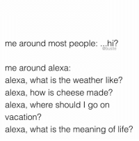 Memes, The Weather, and Vacation: me around most people  hi?  @bustle  me around alexa:  alexa, what is the weather like?  alexa, how is cheese made?  alexa, where should l go on  vacation?  alexa, what is the meaning of life? when your best friend is alexa
