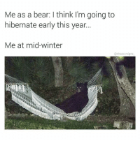 Memes, Winter, and Bear: Me as a bear: l think I'm going to  hibernate early this year...  Me at mid-winter  @chaos reigns if I hibernate now I can still sleep for 1 month 😳🐻 thx for following @chaos.reigns_