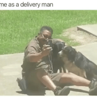 Dogs, Time, and Girl Memes: me as a delivery man So many dogs to meet so little time @mybestiesays