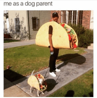 Halloween, Memes, and 🤖: me as a dog parent Is. It. Halloween. Yet.