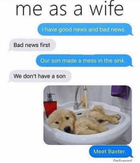 Bad, Memes, and News: me as a wife  I have good news and bad news  Bad news first  Our son made a mess in the sink  We don't have a son  Meet Baxter  Delivarerl Surprises! 😂