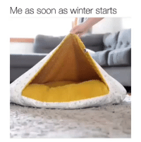 Instagram, Lazy, and Soon...: Me as soon as winter starts Lazy times (@mr.marcel)